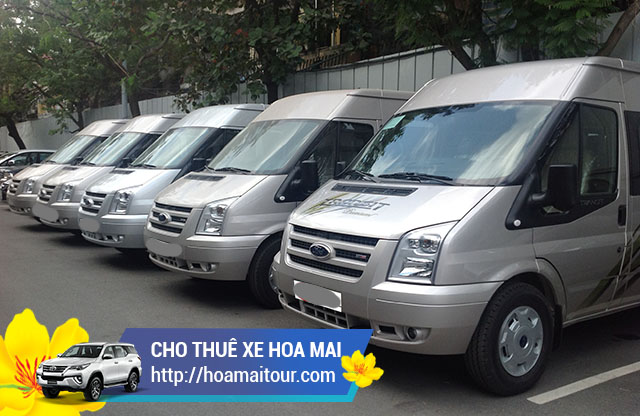 Hoa Mai có sẵn các dòng Ford Transit hay Mercedes Sprinter 16 chỗ phục vụ