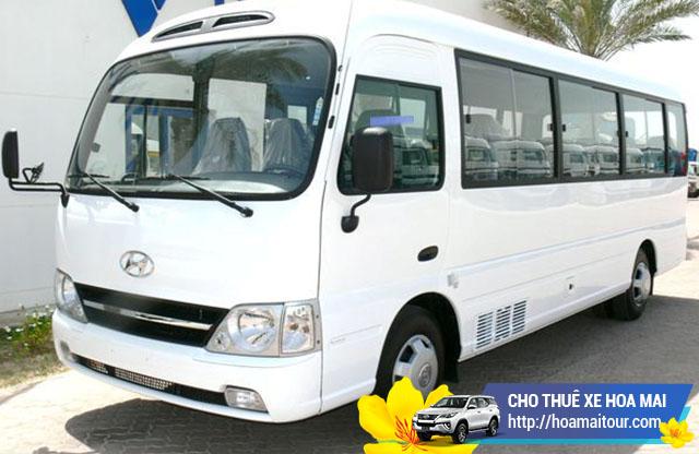 Hoa Mai có sẵn với các dòng xe 16 chỗ Ford Transit hay Mercedes Sprinter